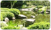 Arredo giardini Latina