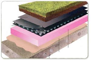 Tecniche contemporanee di installazione tetti verdi